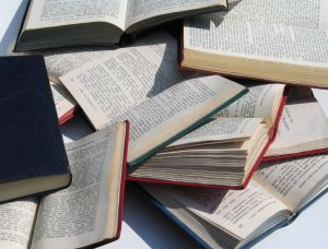 abeka curriculums